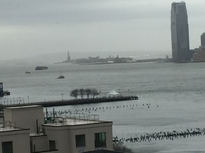 Hudson River and Statue of Liberty seen from The Whitney