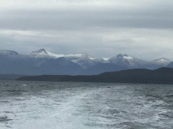 View from Whale Watching boat on Auke Bay, Juneau, Alaska. Can you see any whales?