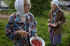 Nadia Sablin, The Last Strawberries, 2009,